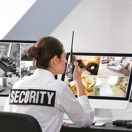 monitored video surveillance system